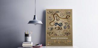 Begonia Studio Snakes of Kazakhstan