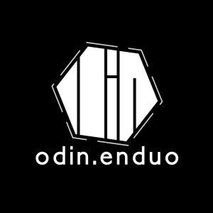 Top logo design trends 2019: дизайн логотипа для Odin.enduo
